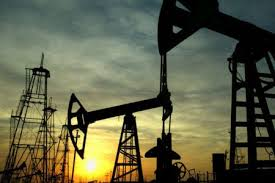 Iranian firm takes up studying 4 oil/gas fields